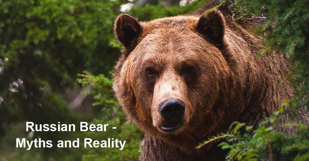 Russian Bear - Myths and Reality