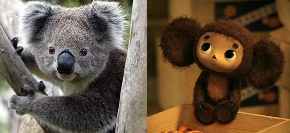 What animal does Cheburashka remind of?
