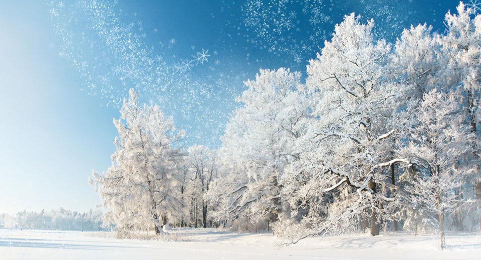 Январь — году начало, зиме середина
