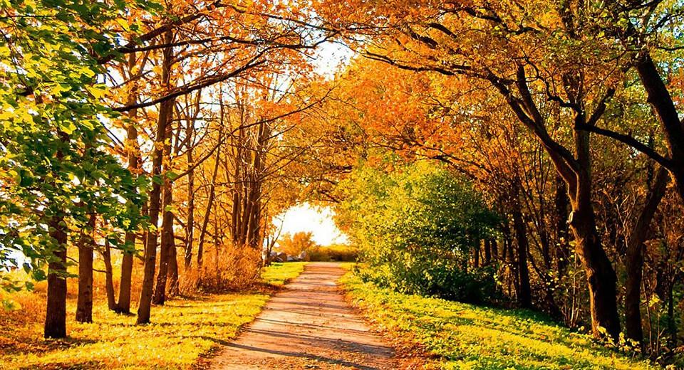 В сентябре лето кончается, осень начинается.