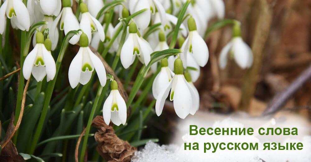 Весенние слова на русском языке