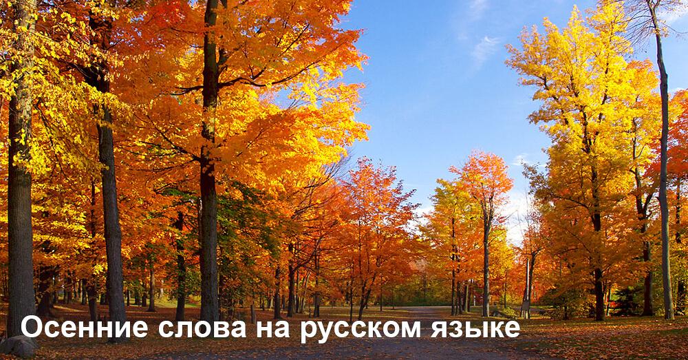 Осенние слова на русском языке